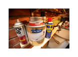 Paint tins and garden and DIY aerosols in a shed