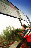 Man recycling Christmas tree at recycling centre, green garden waste signs over container