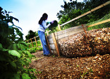 Woman composting at allotments