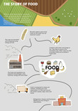 The story of food infographic