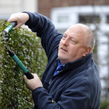 Man trimming garden hedge