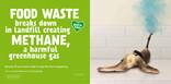 Recycle for London - Food recycling - Banana - 48 sheet