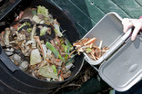 Emptying food waste kitchen caddy into compost bin - showing composting food waste at top of bin