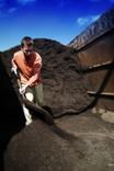 Man shovelling compost