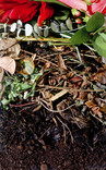 Composting close up - garden waste layered on compost