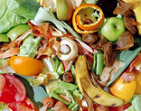 Food waste - close up
