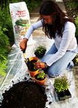 Woman using compost for new plants