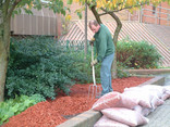 Using recycled wood chippings for landscaping