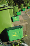 Line of green wheelie bins and kerbside recycling bins on street