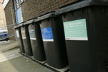 Row of black wheelie bins with recycling labels