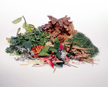 Garden waste - leaves, grass cuttings, light trimmings